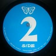 paradise-city-alive-04