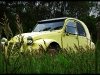 gele-eend-01.jpg