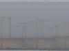 cranes-01.jpg