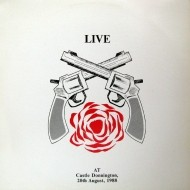 live-at-castle-donnington-print-01